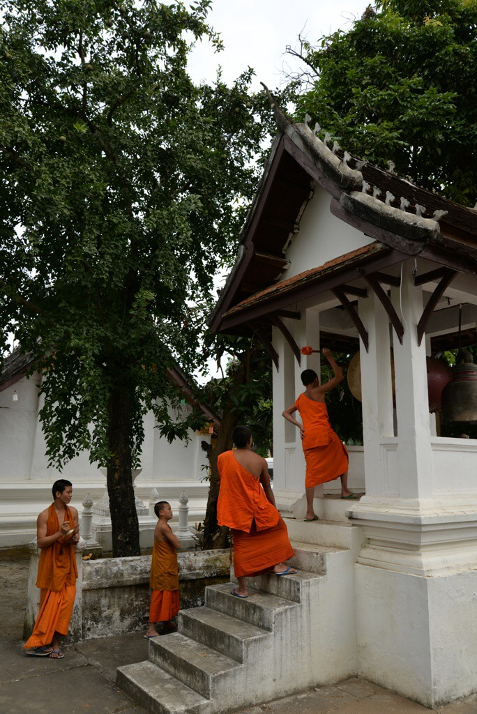 Monks banging their drum during prayer, very cool